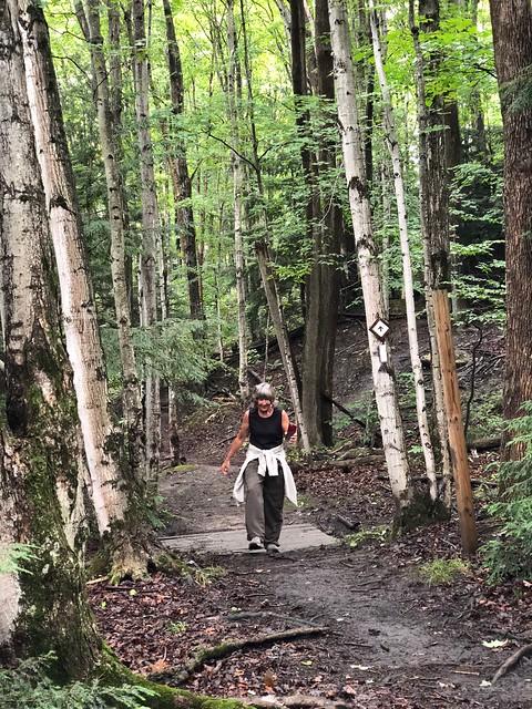 Owen Sound- Bruce Trail to Inglis Falls