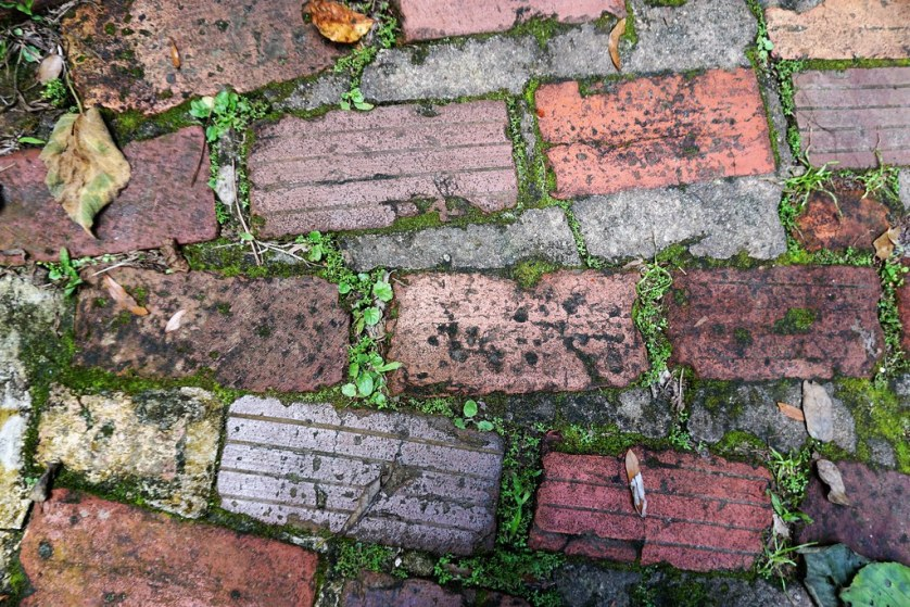 Brick Walkway in Rainbow Springs State Park, Dunnellon Fla., Aug. 2017.