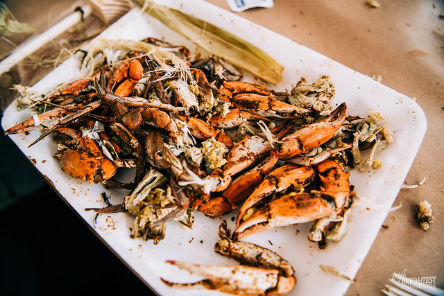 Chesapeake Crab and Beer Festival-12