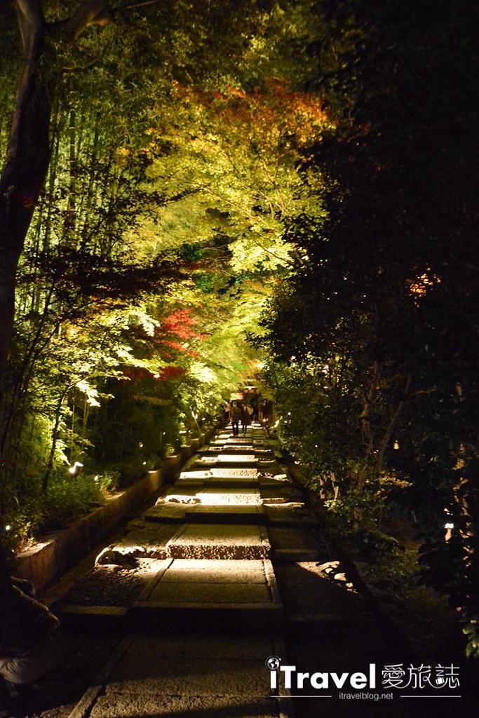 京都賞楓景點 圓德院 (3)