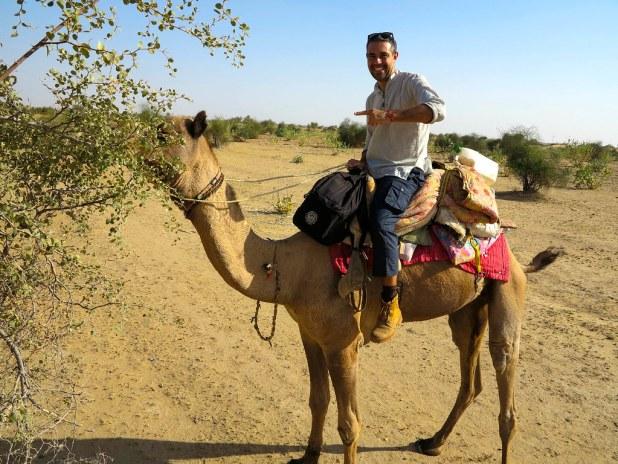 Paseo en camello en Rajastán