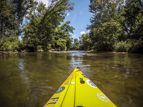 French Broad River - Rosman to Island Ford-52