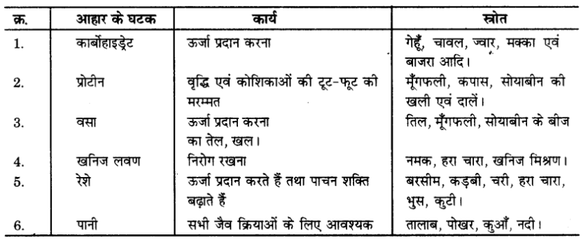 UP Board Solutions for Class 9 Science Chapter 15 Improvement in Food Resources l 8