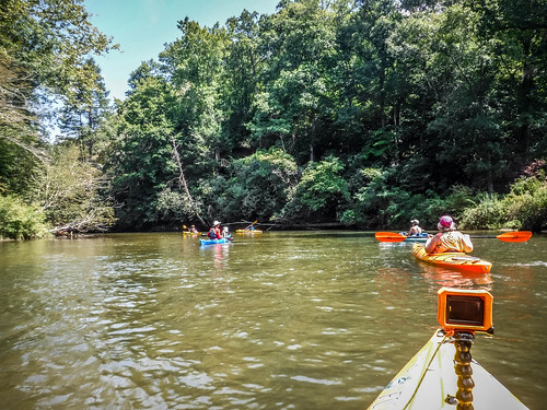 French Broad River - Rosman to Island Ford-176