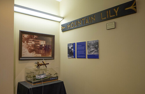 Mountain Lily Exhibit