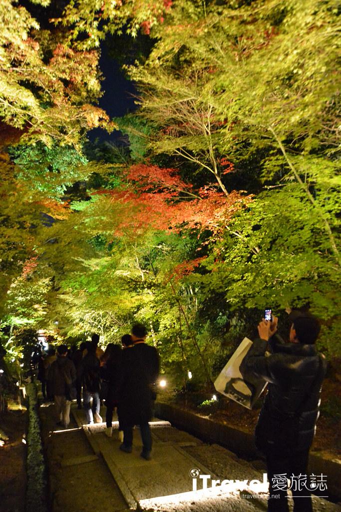 京都賞楓景點 圓德院 (2)