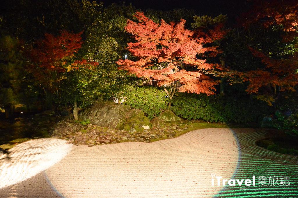 京都賞楓景點 圓德院 (16)
