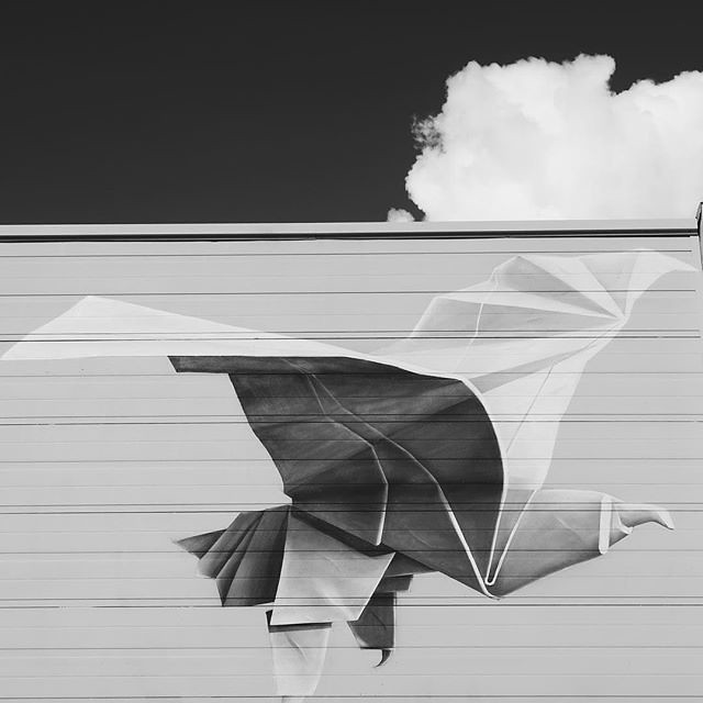 #streetart #powwow #art #blackandwhite #bird #cloud #rotterdam #igrotterdam #visitrotterdam #ignetherlands #wanderlust #vsco #vscocam #citytrip #guardiantravelsnaps @melikepainting #blackandwhitephotography #streetartistry
