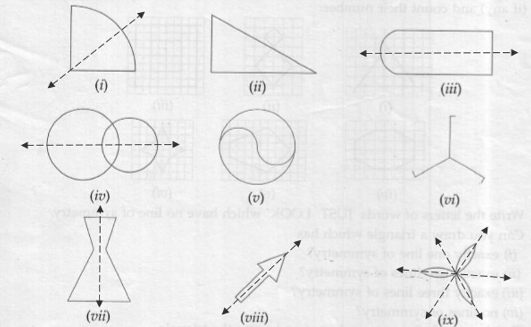 ML Aggarwal ICSE Solutions for Class 6 Maths Chapter 12 Symmetry Ex 12.1 Solution 01