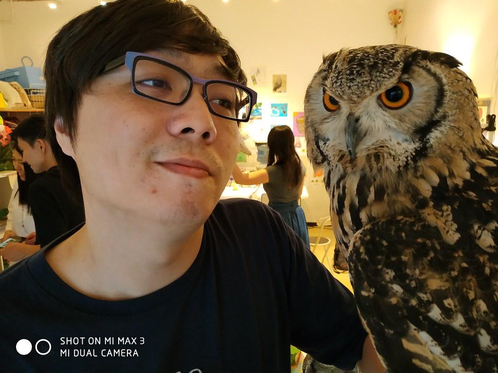 除了電力還有什麼?小米 Max 3 相機日本實拍!貓頭鷹好可愛! @3C 達人廖阿輝