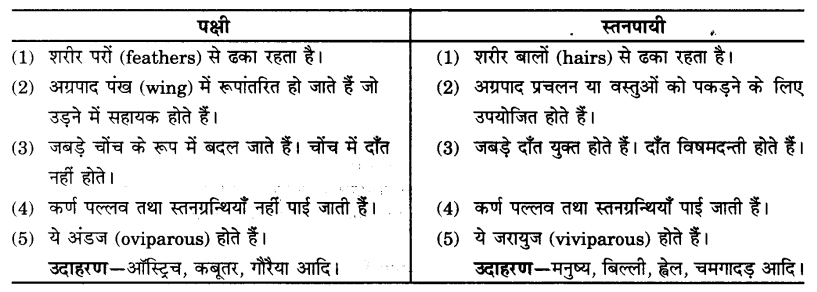 UP Board Solutions for Class 9 Science Chapter 7 Diversity in Living Organisms 105 4