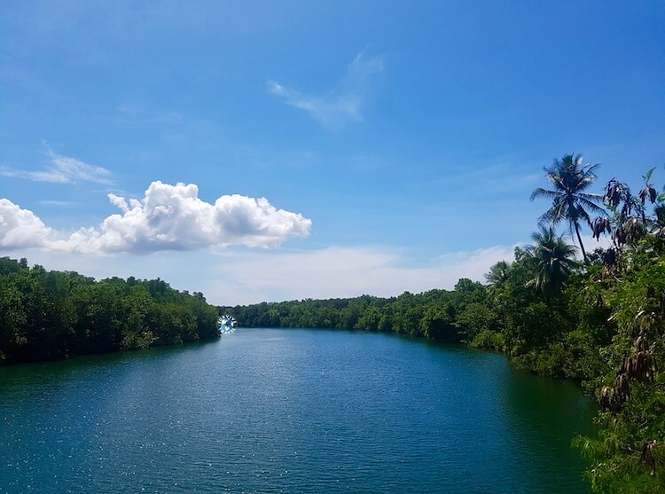 View from Balsahan Bridge, 50+ Things to Do in Puerto Princesa, Tourist Spots Survive Travel (1)