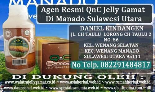 Agen Resmi QnC Jelly Gamat Di Manado Sulawesi Utara