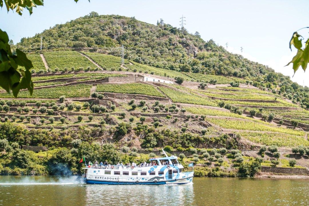 Crociere sul Douro