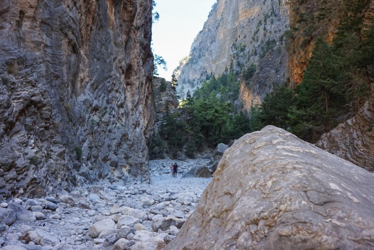 Samaria-rotko, Kreeta