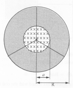 NCERT Solutions for Class 12 physics Chapter 6.25