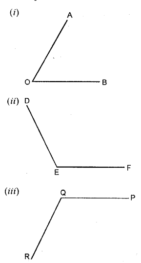 Selina Concise Mathematics Class 6 ICSE Solutions - Properties of Angles and Lines (Including Parallel Lines)-c1