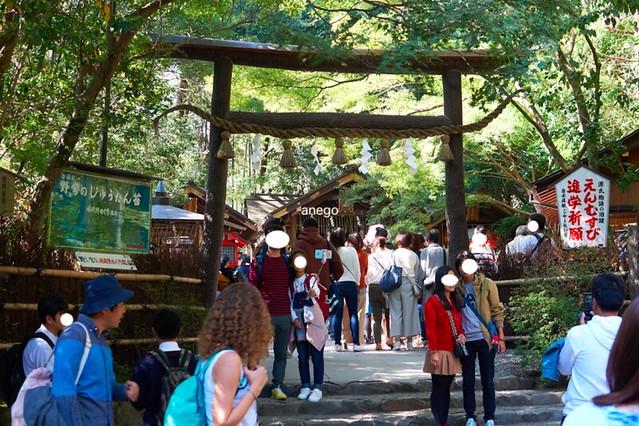 嵐山 野宮神社