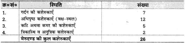 UP Board Solutions for Class 10 Home Science Chapter 17 मानव अस्थि-संस्थान तथा सन्धियाँ 8