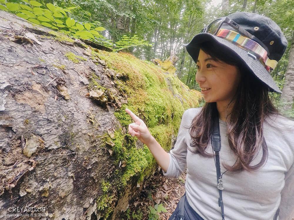 20181018 | 行走在日本東北 | 治癒之森的一堂生命課程,健行在自然首都的福島只見町 10.jpg