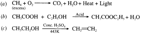 CBSE Sample Papers for Class 10 Science Paper 7 7