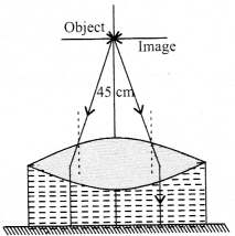 NCERT Solutions for Class 12 Physics Chapter 9 Ray Optics and Optical Instruments 094
