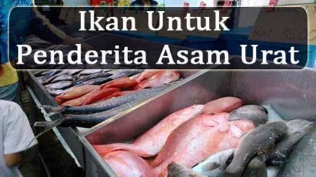 Jenis Ikan Yang Boleh Dimakan Penderita Asam Urat
