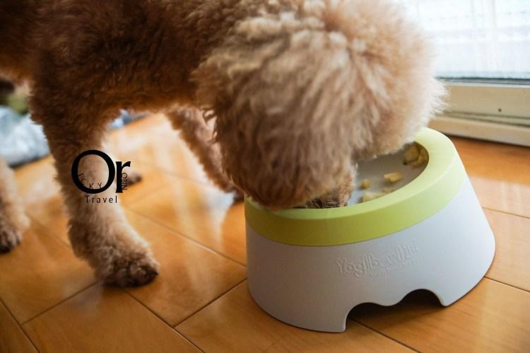 寵物用品開箱|YOGI BOWL III,給毛小孩的抗菌且大口享受也能防止食物不再撒出的碗