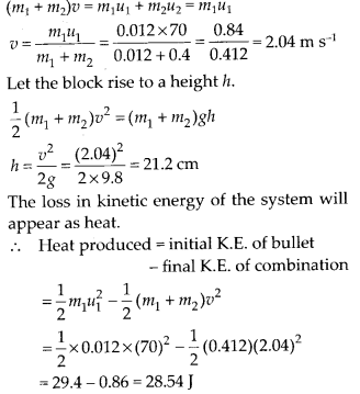 NCERT Solutions for Class 11 Physics Chapter 6 Work Energy And Power 19