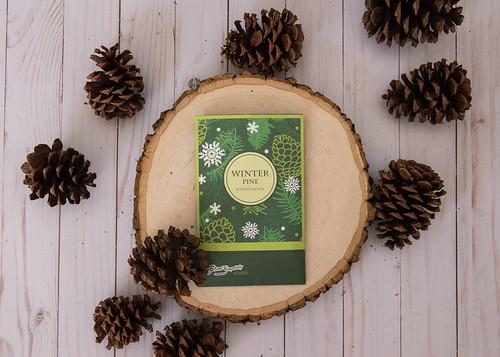 Enchanting Seasonal Home Fragrances