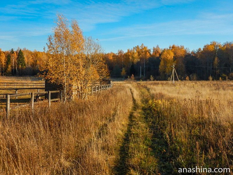 Дорожка вдоль левад, КСК Славино