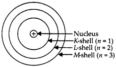 NCERT Solutions for Class 9 Science Chapter 4 Structure of the Atom 1