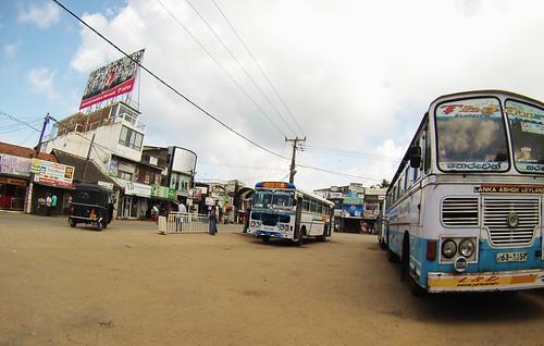 srilankalta (3)