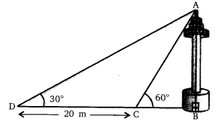 NCERT Solutions for Class 10 Maths Chapter 9 Some Applications of Trigonometry 15