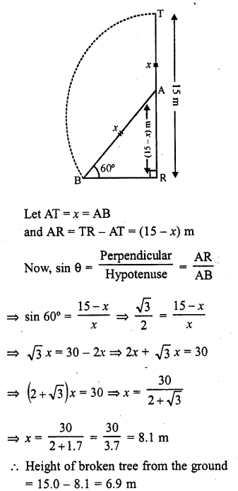 RD Sharma Class 10 Solutions Chapter 12 Heights and Distances Ex 12.1 - 8