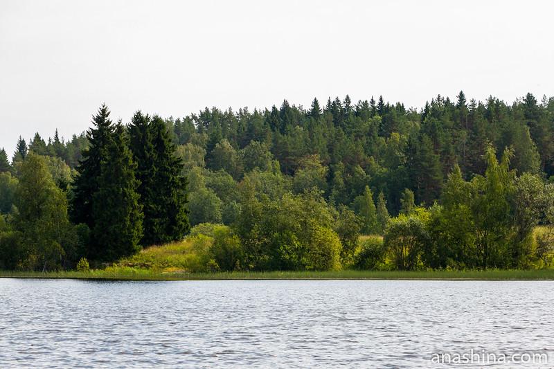 Живописный пейзаж, Ладожское озеро