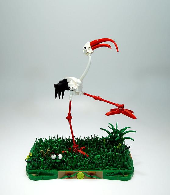 Curve-billed Stork