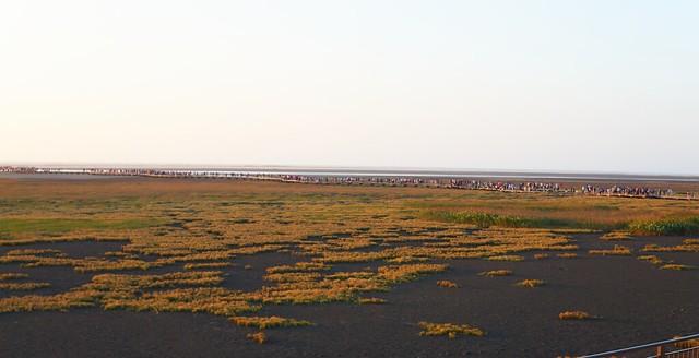 高美湿地 人の列