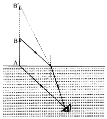 NCERT Solutions for Class 12 physics Chapter 9.28