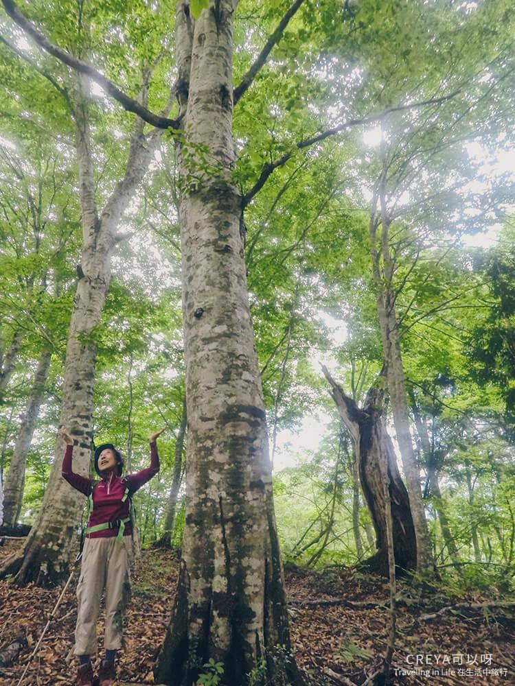 20181018 | 行走在日本東北 | 治癒之森的一堂生命課程,健行在自然首都的福島只見町 14.jpg