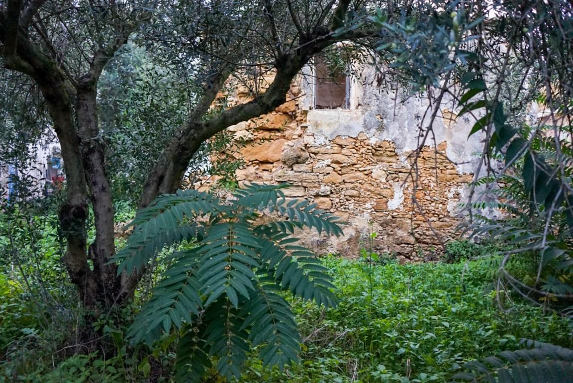 Kreeta - Ilmastokatastrofi uhkaa
