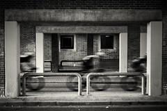 Aalborg bicycle race II