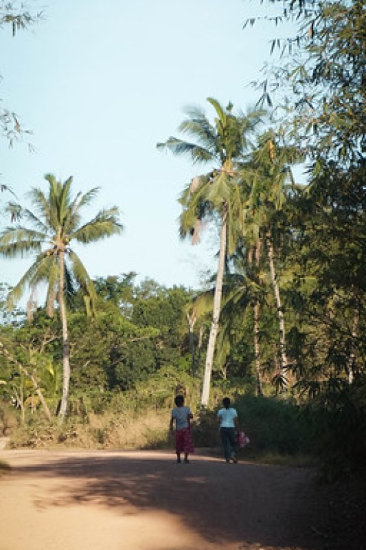 busuanga17 (1 of 1)
