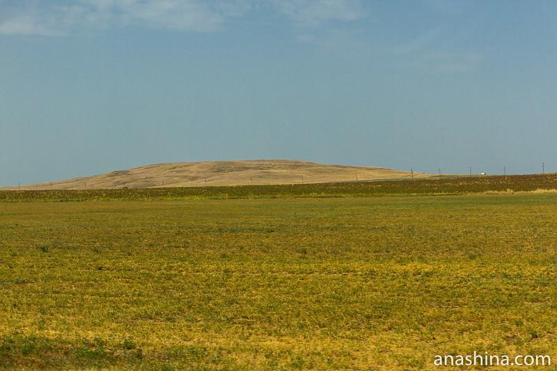 Холм, Таманский полуостров, Краснодарский край