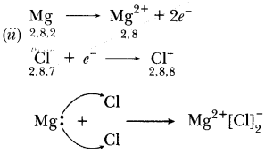 CBSE Sample Papers for Class 10 Science Paper 5 14