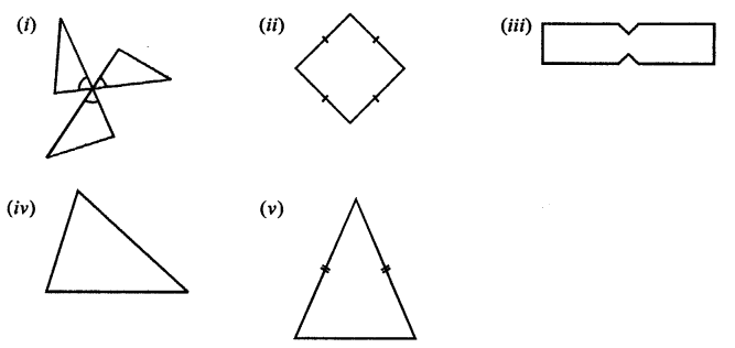 Selina ICSE Class 7 Maths Solutions - Symmetry (Including Reflection and Rotation) -c5