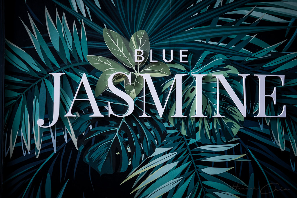 Blue Jasmine-18