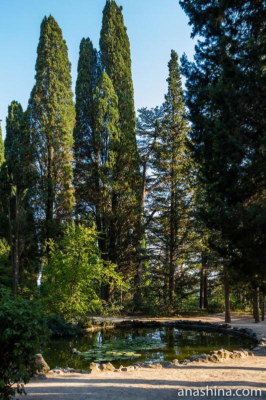 Массандровский парк, Ялта, Крым