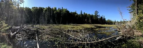Lake Superior Park - tarper trail lake