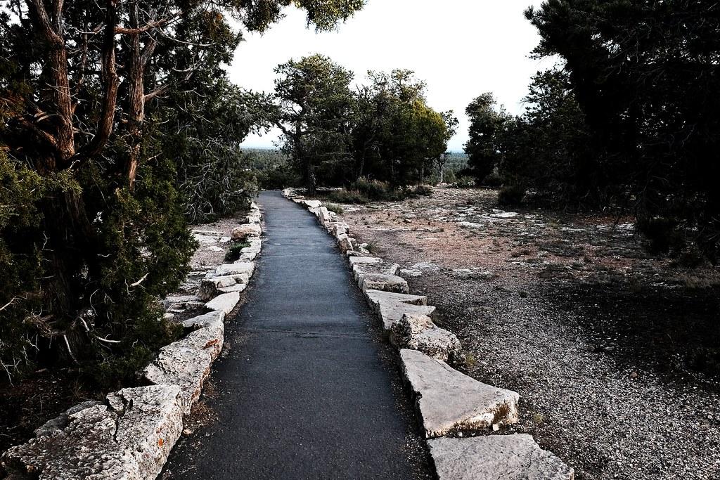 path to the edge at dawn